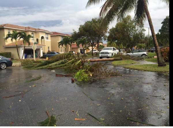 Tornados y tormenta dejan serios daños en Florida