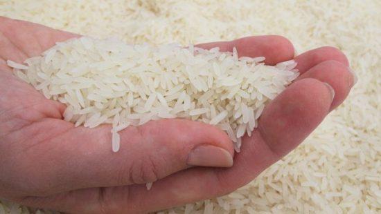 Dicen no será necesario importar arroz
