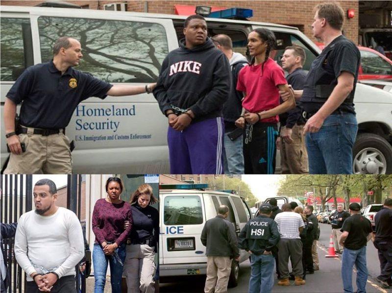 Dominicanos entre líderes pandillas Bronx apresados