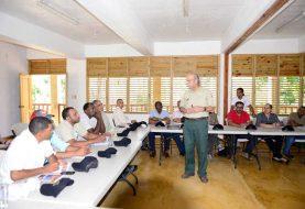 Técnicos EEUU ayudarán a combatir parásito ataca pinos
