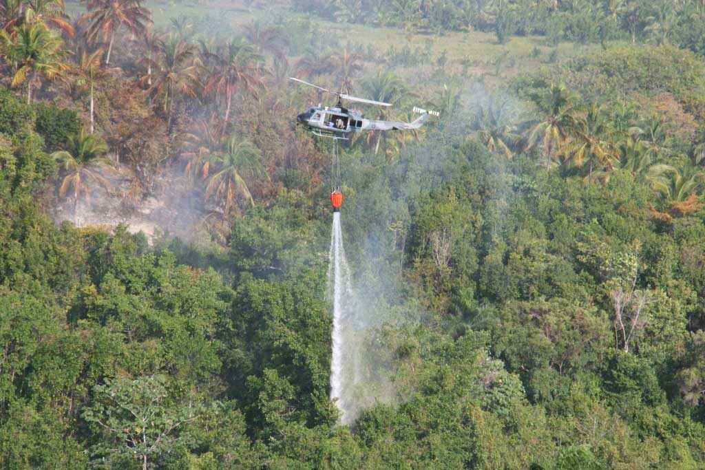 Alerta en temporada de incendios forestales en el país
