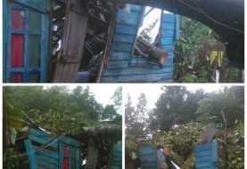 Dos heridos al colapsar árbol en Sosúa