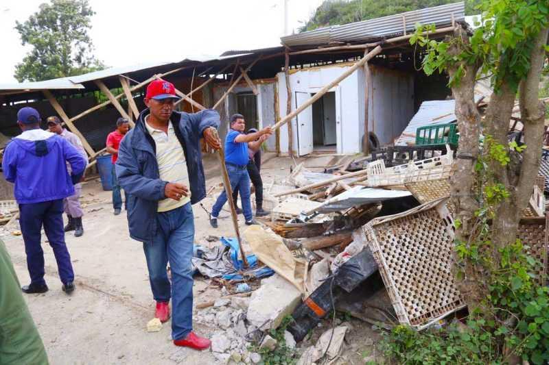 Clausuran negocio en Santiago comercializaba carne de pollo en mal estado
