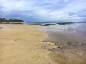 Descartan retiro del mar en Las Terrenas tenga que ver con tsunami