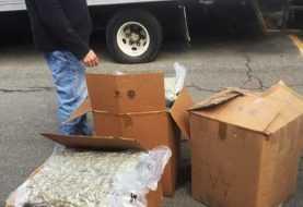 Varios dominicanos arrestados por drogas en Alto Manhattan