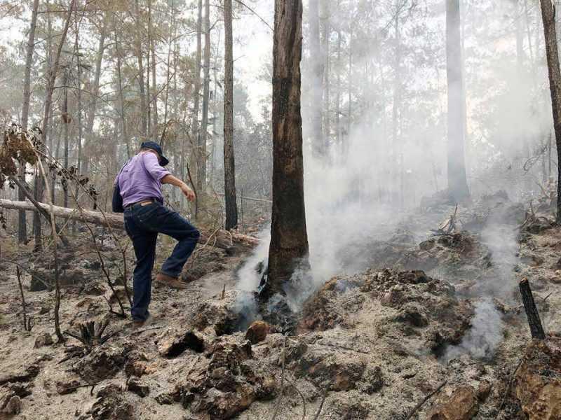 Sospechan que haitianos molestos dieron fuego bosques Bahoruco