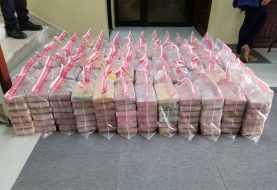 Decomisan 394 paquetes de cocaína puerto Multimodal Caucedo