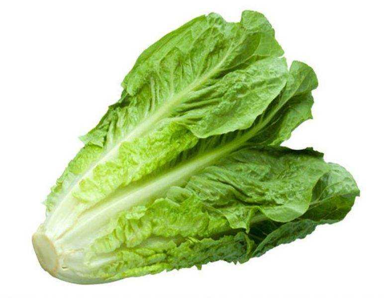 Consumer Reports advierte evitar comer Lechuga romana