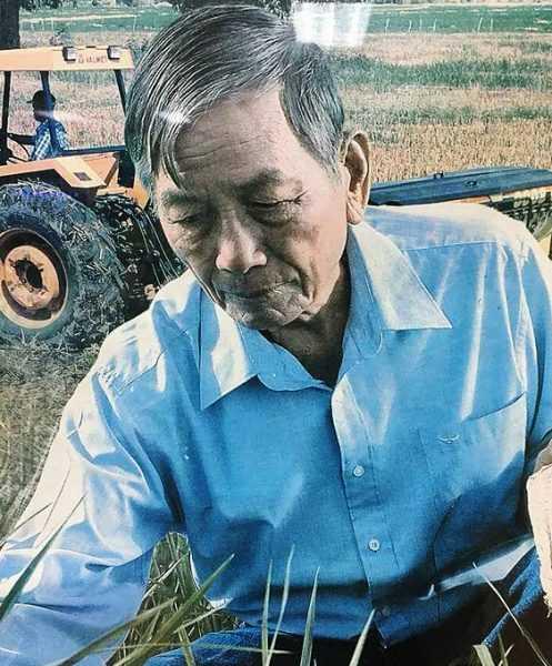 ¿Quién era el padre del arroz dominicano?