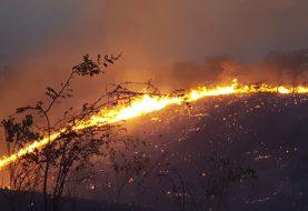 Fuego forestal afecta Jaiquí Picado, La Cuesta, de Sajoma