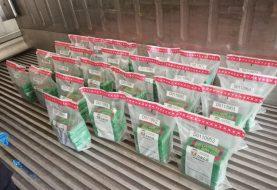 Montecristi: Decomisan 125 paquetes de cocaína