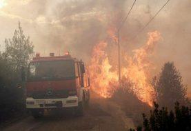 Aumenta a 74 números de muertos en Grecia por incendios