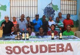 Entidad denuncia contubernio director Inuva con intermediarios de la uva