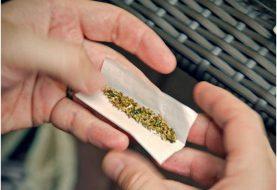 Dominicanos  opuestos regularicen uso marihuana para adultos