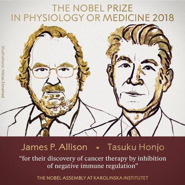 Investigadores terapia cáncer reciben Nobel de Medicina
