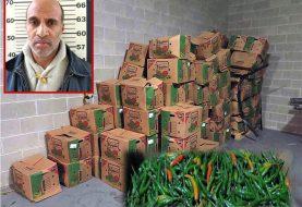Dominicano culpable por traficar cocaína en ajíes desde RD