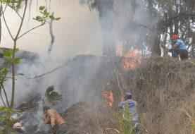 Ministro Medio Ambiente revela fuegos forestales son provocados