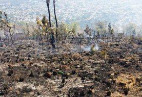 La Vega: Fuego loma Guaiguí afectó más de 1,500 tareas de bosque