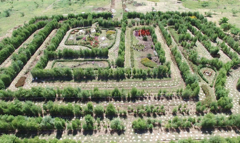 En 12 meses más de 200 mil personas visitaron Jardín Botánico