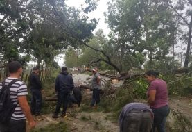 Ventarrones afectan Villa González y Manabao
