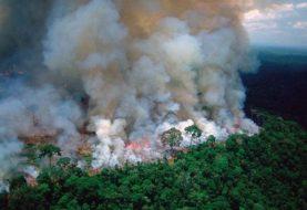 Aseguran son intencionales fuegos Amazonía brasileña