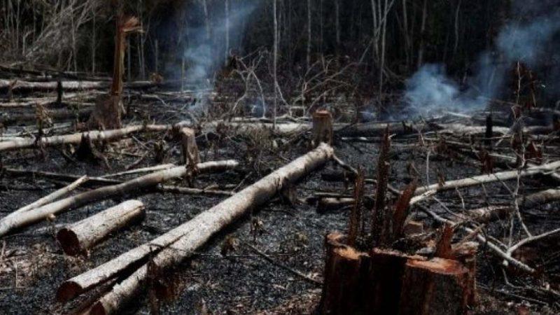 Bolsonaro condiciona aceptar ayuda para combatir incendios