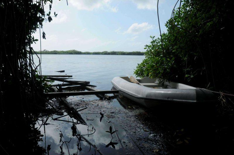 Contaminación dilata progreso turístico reserva natural laguna de Bávaro