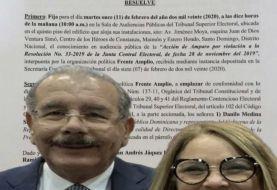 TSE autoriza al Frente Amplio emplazar a Iris Guaba y a Danilo