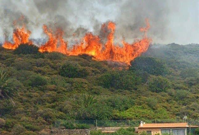 Denuncia arden montañas ante indiferencia de Medio Ambiente