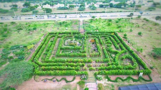 Esta semana permitirán acceso Jardín Botánico Santiago