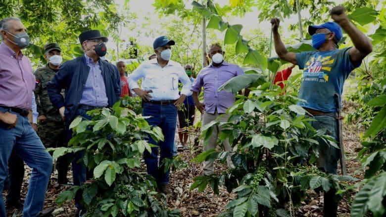 Danilo Medina constata avances Proyectos Desarrollo Agroforestal
