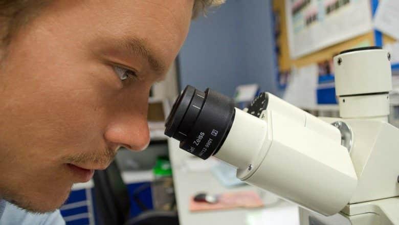 COVID-19 afecta también las células neuronales