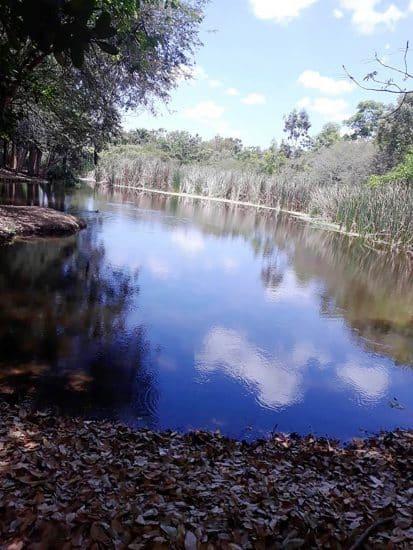 Humedales de Laguna Prieta