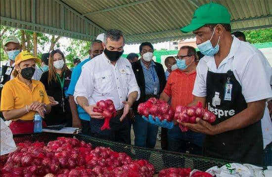 mercado productores inespre