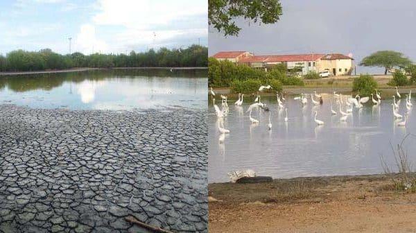 Denuncian crimen  ecológico con secado de lagunas